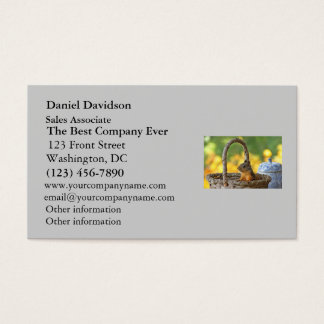Cute Squirrel in a Basket Business Card