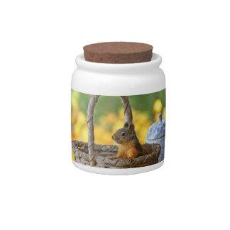 Cute Squirrel in a Basket Candy Jars