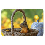 Cute Squirrel in a Basket Flexible Magnets