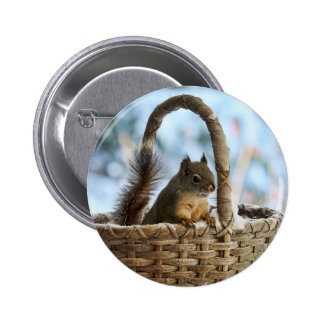 Cute Squirrel in a Basket in Winter Pinback Button