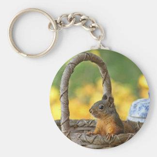 Cute Squirrel in a Basket Key Chains