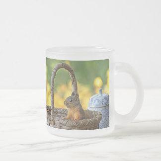 Cute Squirrel in a Basket 10 Oz Frosted Glass Coffee Mug
