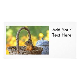 Cute Squirrel in a Basket Photo Card Template