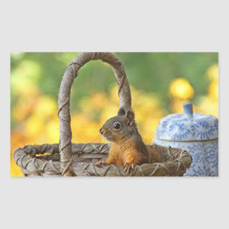 Cute Squirrel in a Basket Rectangular Sticker