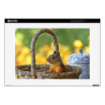 Cute Squirrel in a Basket Skins For Laptops
