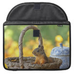 Cute Squirrel in a Basket Sleeve For MacBook Pro