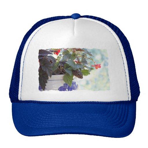 Cute Squirrel in a Flower Pot Mesh Hat