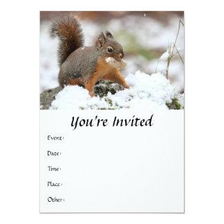 Cute Squirrel in Snow with Peanut 5x7 Paper Invitation Card