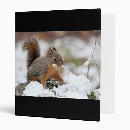 Cute Squirrel in Snow with Peanut Binder
