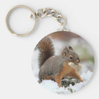 Cute Squirrel in Snow with Peanut Basic Round Button Keychain
