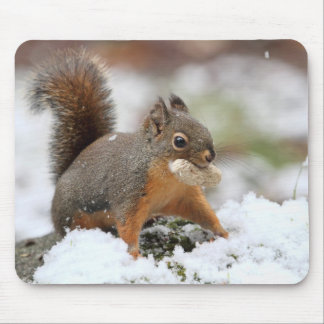 Cute Squirrel in Snow with Peanut Mouse Pad
