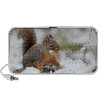 Cute Squirrel in Snow with Peanut Portable Speaker