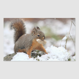 Cute Squirrel in Snow with Peanut Rectangle Stickers