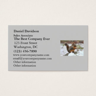 Cute Squirrel in the Snow Photo Business Card