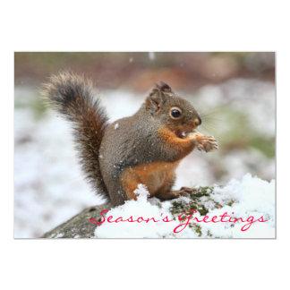 Cute Squirrel in the Snow Photo Card