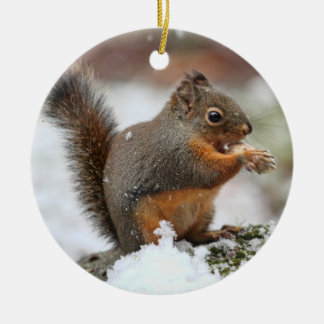 Cute Squirrel in the Snow Photo Ceramic Ornament
