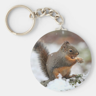 Cute Squirrel in the Snow Photo Key Chains