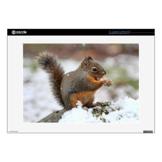 Cute Squirrel in the Snow Photo Laptop Decals