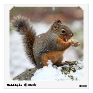 Cute Squirrel in the Snow Photo Wall Decal