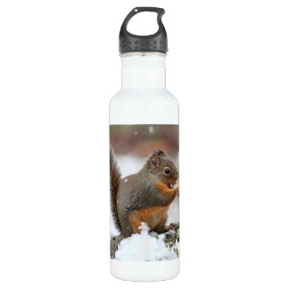 Cute Squirrel in the Snow Photo Water Bottle