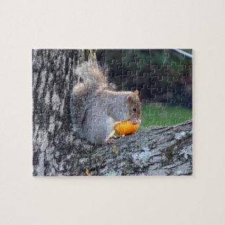 Cute Squirrel in Tree Eating Mini Pumpkin Difficul Puzzle