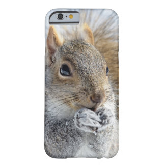 Cute Squirrel in Winter Barely There iPhone 6 Case