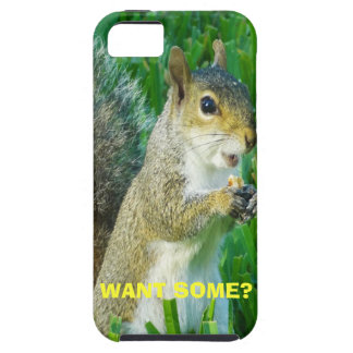 Cute Squirrel iPhone 5S Cases and Covers