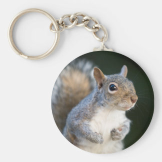 Cute Squirrel Keychain