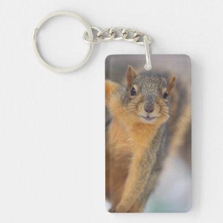 Cute Squirrel Keychain