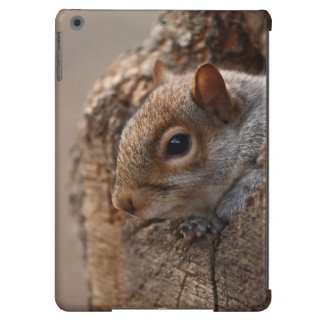 Cute squirrel looks out of her hole iPad air cover
