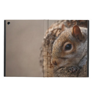 Cute squirrel looks out of her hole iPad air covers