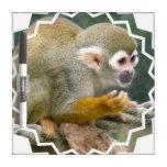 Cute Squirrel Monkey Dry Erase Board
