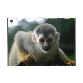 Cute Squirrel Monkey iPad Mini Covers