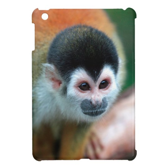 Cute squirrel monkey Panama tropical rainforest Case For The iPad Mini