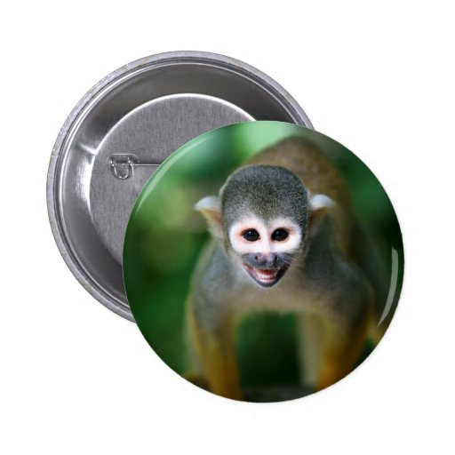 Cute squirrel monkey pin