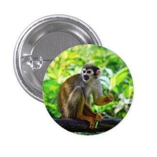 Cute squirrel monkey pinback button