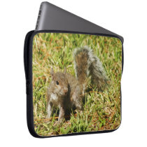 Cute Squirrel Nature Laptop Sleeve