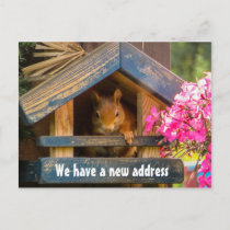 Cute Squirrel New Home Address Just Moved Announcement Postcard
