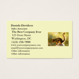 Cute Squirrel on a Cookie Jar Business Card