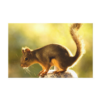 Cute Squirrel on a Cookie Jar Stretched Canvas Print