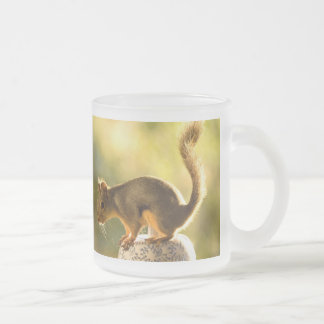 Cute Squirrel on a Cookie Jar Frosted Glass Coffee Mug
