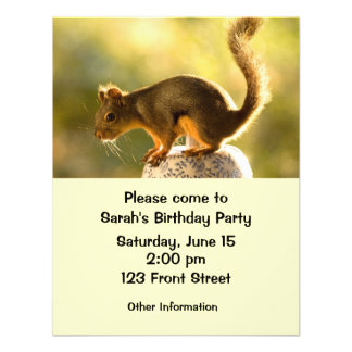 Cute Squirrel on a Cookie Jar Personalized Invitations