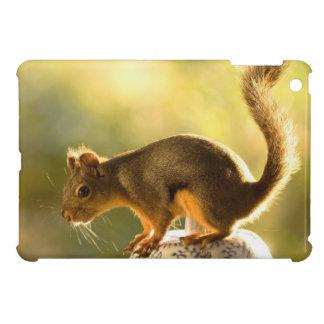 Cute Squirrel on a Cookie Jar iPad Mini Covers