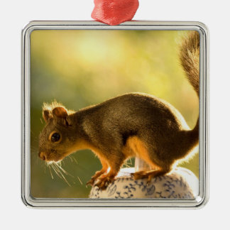 Cute Squirrel on a Cookie Jar Metal Ornament