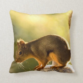 Cute Squirrel on a Cookie Jar Pillows