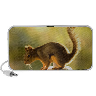 Cute Squirrel on a Cookie Jar Mini Speaker
