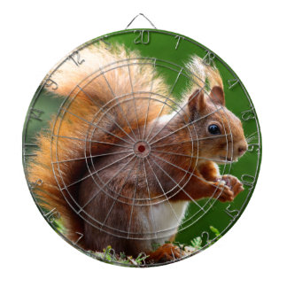 Cute Squirrel Picture Dartboard With Darts