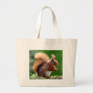 Cute Squirrel Picture Large Tote Bag