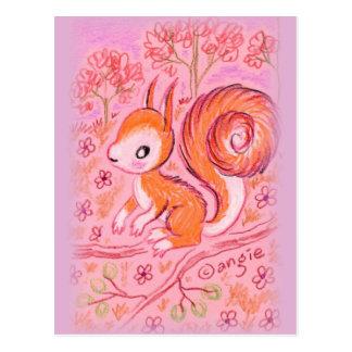 Cute Squirrel Post Card