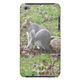Cute Squirrel Scratching Barely There iPod Cover